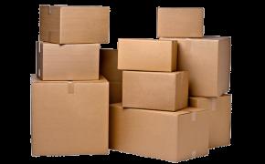 Inside the Box: Apostle Paul