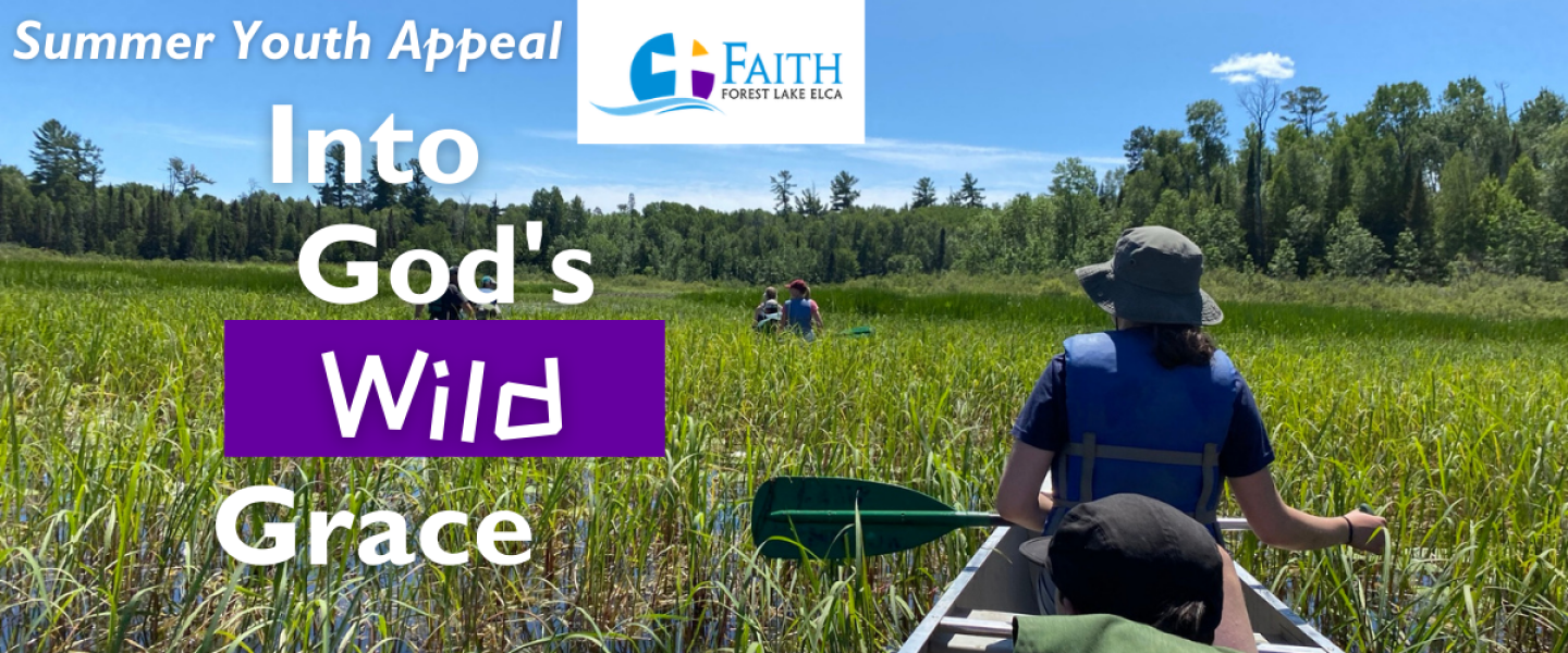 Into God's Wild Grace: Summer Youth Appeal
